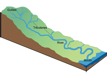 Watershed Tributary Diagram Image Gallery tributar...